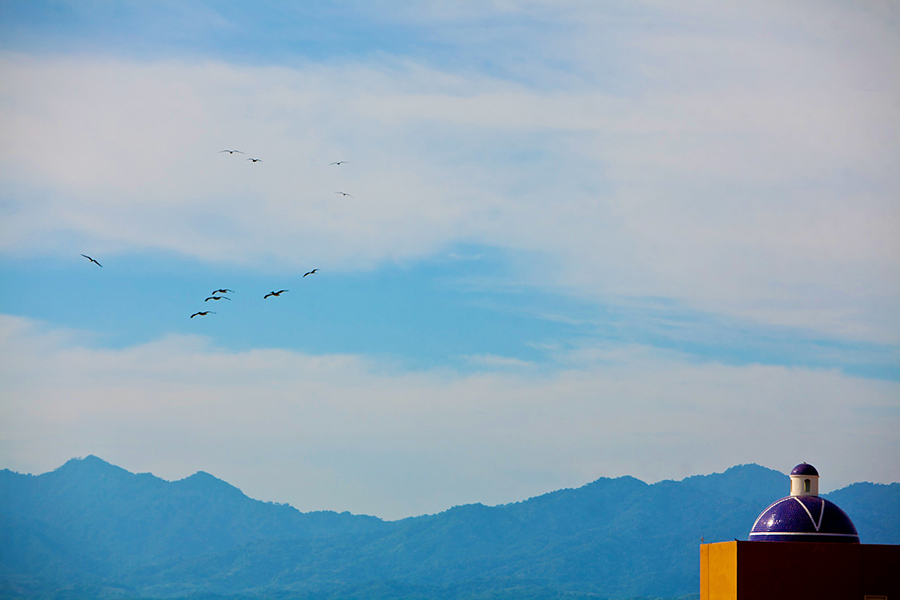 Birds in the sky :: Destination Wedding Photography by infusedstudios.ca