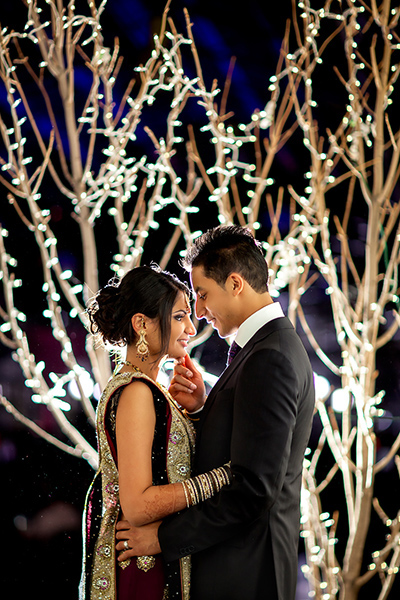 Lit tree :: Wedding Photography Edmonton