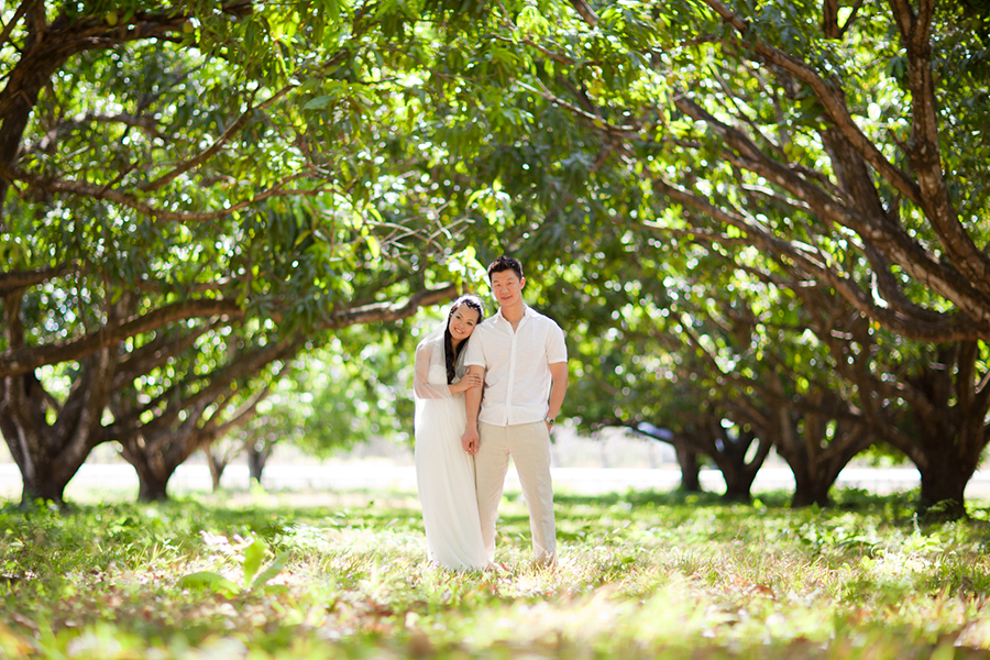 In the orchard :: Destination Wedding Photography