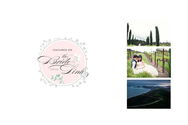 Tammy + Dickson Napa Valley engagement photos on The Bride Link