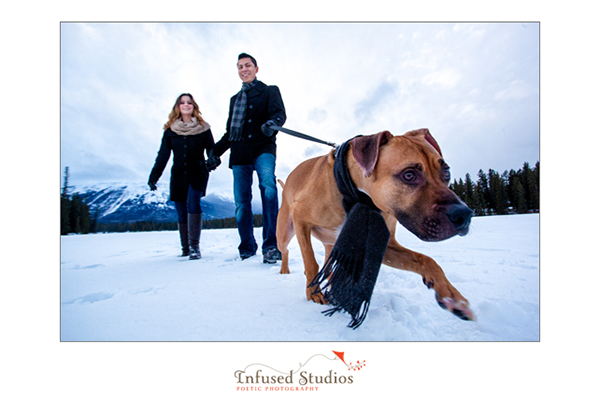 Winter engagement photos :: walking the dog in the snow