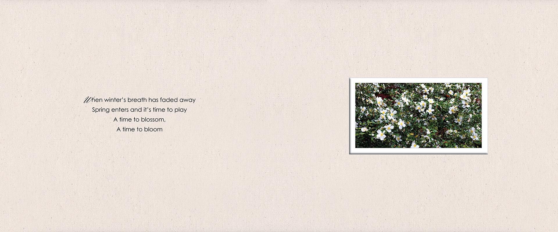Destination engagement album :: Caitlyn + Jordan pages 1-2