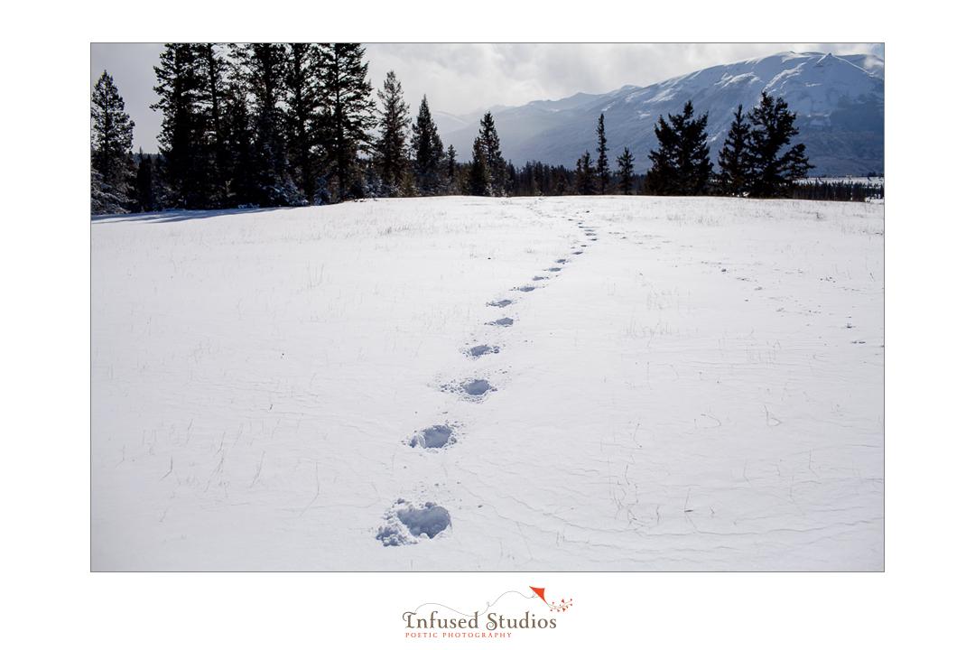 Snowy winter engagement photos