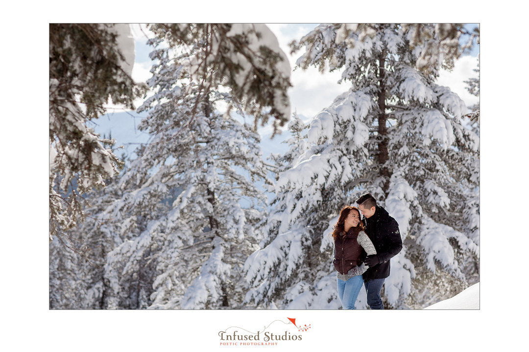 Snow covered trees as background for engagement photos